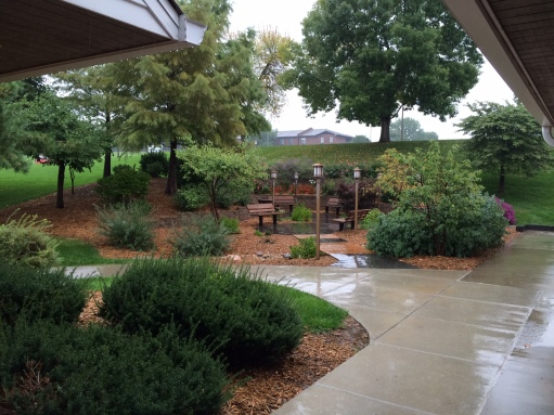 Healing garden in the rain